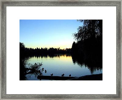 Sundown At Lost Lagoon Framed Print by Will Borden
