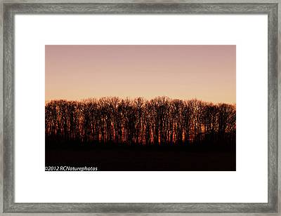 Framed Print featuring the photograph Sundown In Silhouette by Rachel Cohen