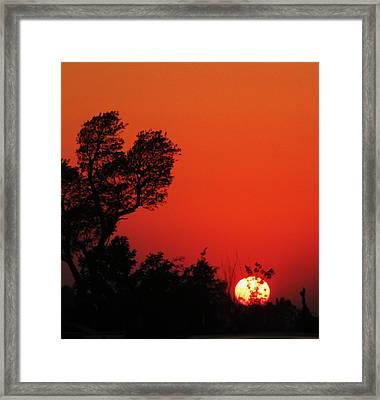 Sundown Framed Print by Todd Sherlock