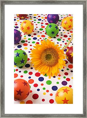 Sunflower And Colorful Balls Framed Print by Garry Gay