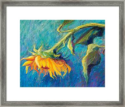 Sunflower Framed Print by Candy Mayer