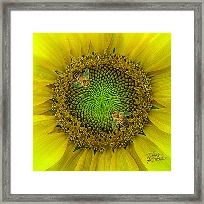Sunflower Dance II Framed Print by Doug Kreuger