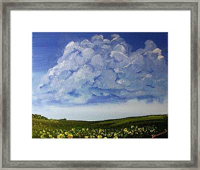 Sunflower Field Framed Print by Raymond Doward