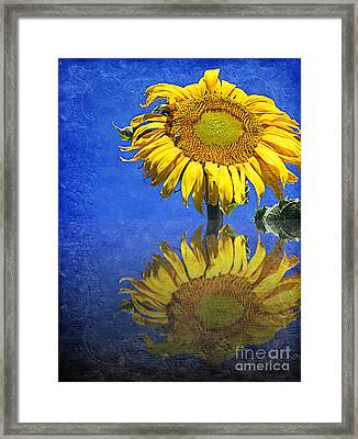Sunflower Reflection Framed Print by Andee Design
