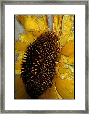 Framed Print featuring the photograph Sunflower Side by Lou Belcher