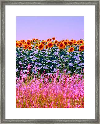 Framed Print featuring the photograph Sunflowers by Ann Johndro-Collins