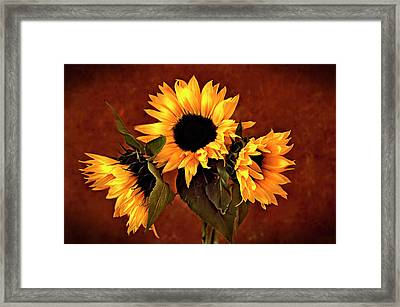 Framed Print featuring the photograph Sunflowers by James Bethanis