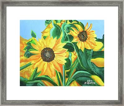 Sunflowers Framed Print by John Keaton