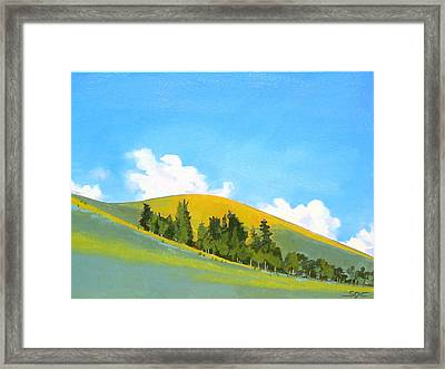 Sungold Framed Print