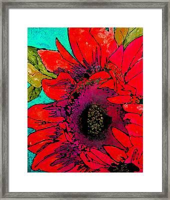 Sunkissed Sunflower Framed Print