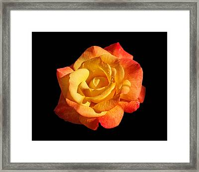 Sunlight And Shadows Framed Print