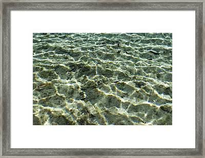 Sunlight Creates Reflective Patterns Framed Print by Nick Norman