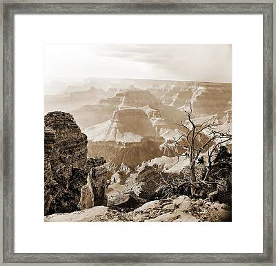 Sunlight In The Grand Canyon Framed Print by M K  Miller