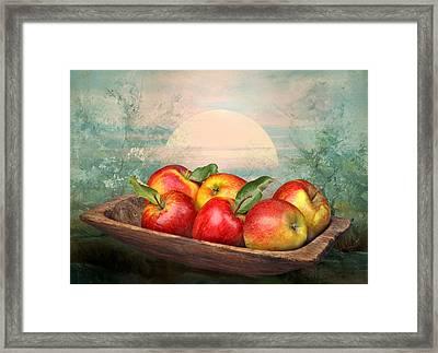 Sunlight Framed Print by Manfred Lutzius