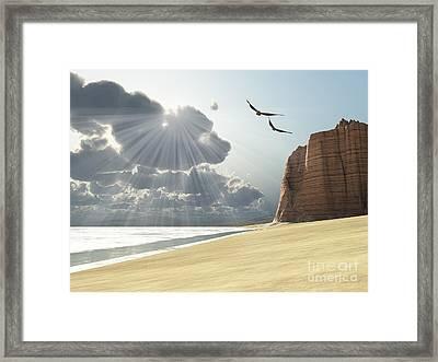 Sunlight Shines Down On Two Birds Framed Print