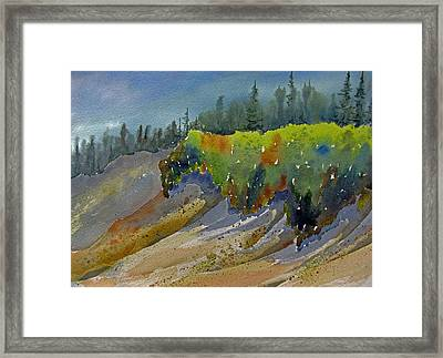 Sunlit Lichen Framed Print by Ramona Kraemer-Dobson