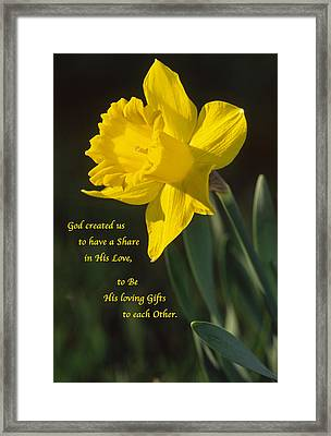 Sunny Daffodil With Quote Framed Print