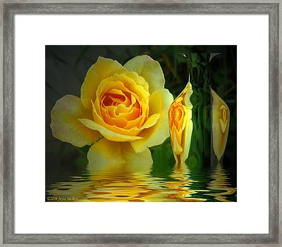Sunny Delight And Vase 2 Framed Print by Joyce Dickens