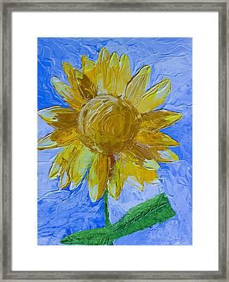 Sunny Framed Print by Heidi Smith