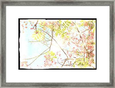 Sunny Skies Above Framed Print by Leysilie Williams