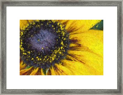 Sunny Yellow Framed Print by Heidi Smith