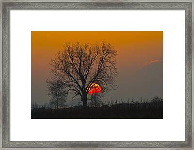 Sunrise - 4810 Framed Print