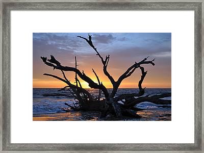Sunrise At Driftwood Beach 5.2 Framed Print