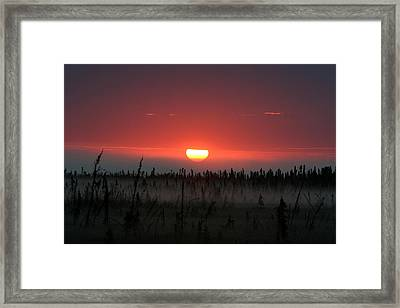 Sunrise At Kenai Peninsula Framed Print by Mary Gaines