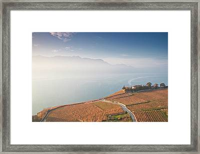 Sunrise At Lavaux Vineyard Terraces Framed Print by Harri's Photography