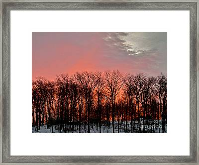 Framed Print featuring the photograph Sunrise Behind The Trees by Mark Dodd