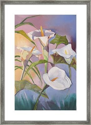Sunrise Callas Framed Print