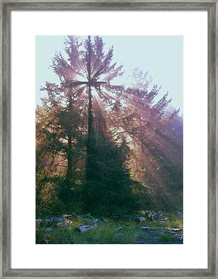 Sunrise Cross Framed Print by Cindy Wright