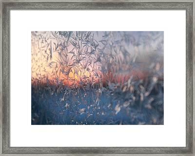 Sunrise Framed Print by Ellery Russell