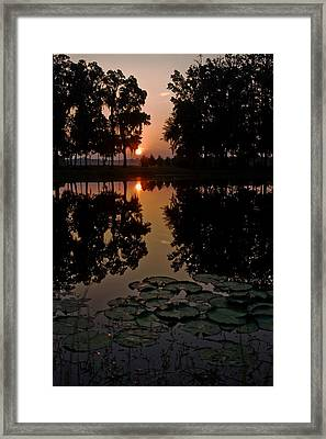 Sunrise From My Pad Framed Print by Dan Wells