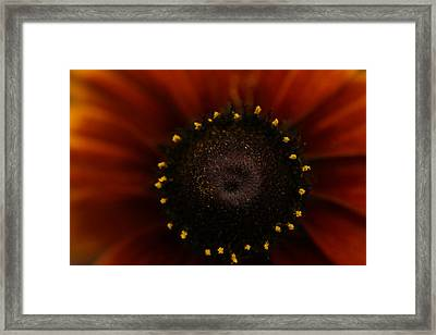 Sunrise Framed Print by Gabriel Calahorra