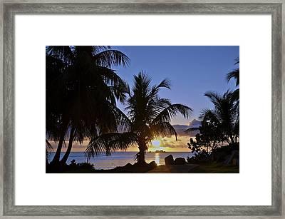 Sunrise In Paradise Framed Print by Nancy Rohrig