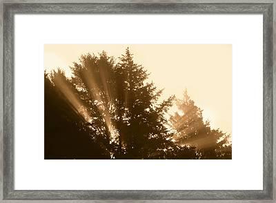 Sunrise In Sepia Framed Print