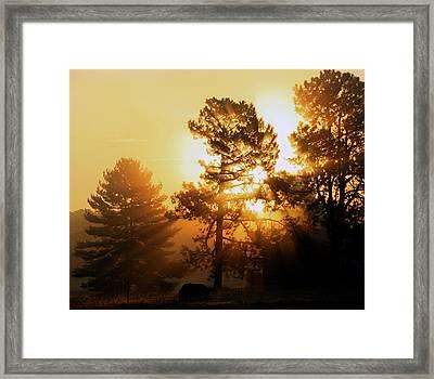 Sunrise Framed Print by Karen Harrison