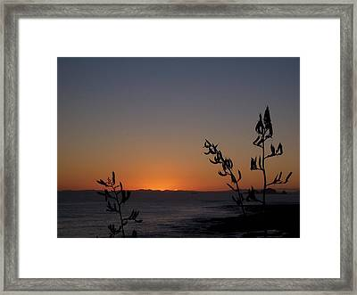 Framed Print featuring the photograph Sunrise On East Coast Of North Island 2 by Peter Mooyman