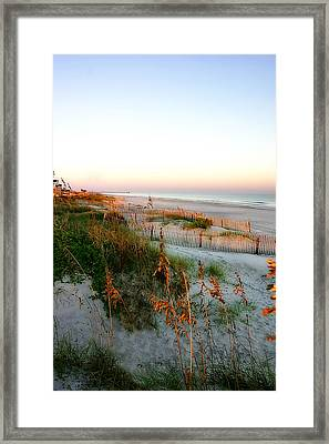 Sunrise On Sea Oats -2 Framed Print by Alan Hausenflock