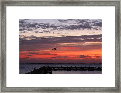 Framed Print featuring the photograph Sunrise On The Indian River by Jeanne Andrews