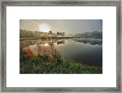 Sunrise On The Pond Framed Print