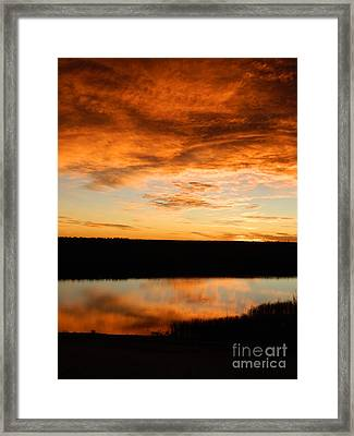 Sunrise Reflections Framed Print by Sara  Mayer
