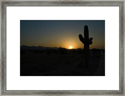 Framed Print featuring the photograph Sunrise Saguaro by Tom Singleton