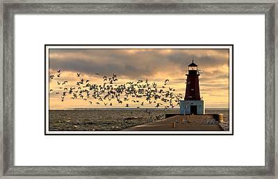 Sunrise Seagulls 219 Framed Print