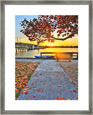 Sunrise Seista Drive2  Framed Print by Jenny Ellen Photography