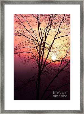 Sunrise Sunset Framed Print by Kim Fearheiley