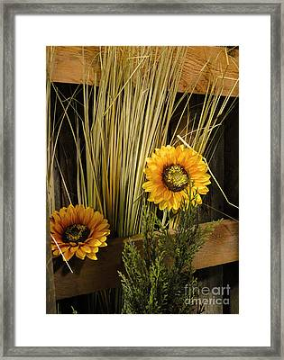Suns Of The West Framed Print by Al Bourassa