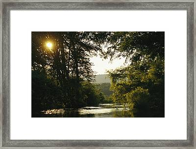 Sunset Above A Riparian Forest Framed Print by Raymond Gehman