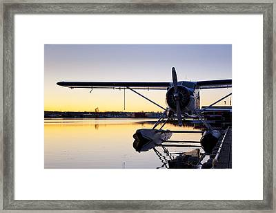 Sunset And A Beaver Framed Print by Tim Grams